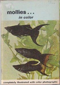 Aquarium Tropical Fish Mollies in Color Axelrod 68 RARE