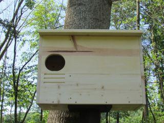 Barn Owl House Bird House Large Box 23 x 16 x 12