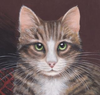 TABBY CAT GREEN EYES LIMITED EDITION SIGNED PRINT BY SUE BARRATT