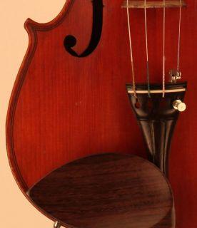 Old fine violin labeled Paolo Barbieri geige violine violon viola