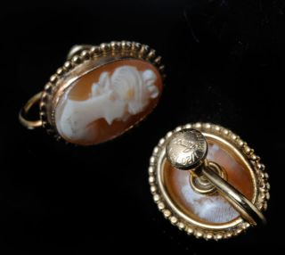 Vintage 40s Amco 12K GF Gold Filled Cameo Earrings Real Carved Shell