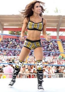AJ Lee Ready to Fight Photo WWE Diva A J April Jeanette