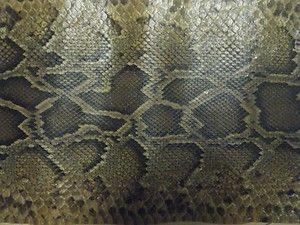 Genuine Burmese Python Snake Skin Taxidermy 12 Feet