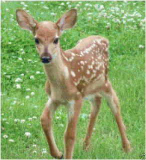 Fawn Baby Deer in Meadow Counted Cross Stitch Pattern