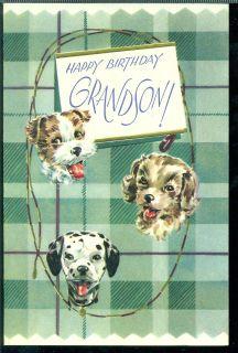 Vintage Greeting Card Happy Birthday Grandson Puppies Dalmation Cocker