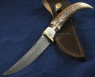 Fox N Hound Black Mountain Scout Stag Damascus Knife