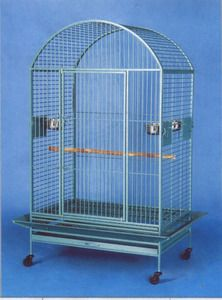 Large Bird Cage Parrot Cages Macaw Dometop 36x26X65 Green Vein