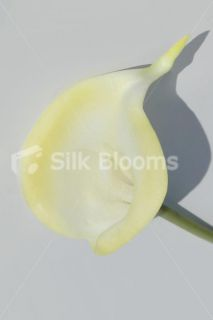 Colour Tipped Calla Lily, Artificial Colourful Lilies, Real Touch, All