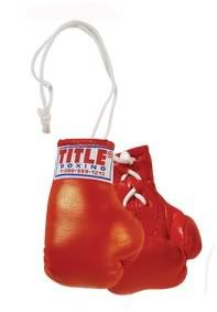 Title 3 Mini Boxing Gloves Bag MMA Training Heavy RD