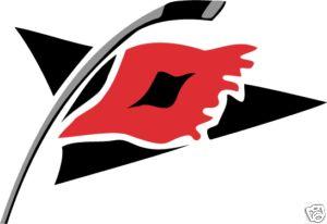 Carolina Hurricanes NHL Hockey Car Bumper Sticker 6X3
