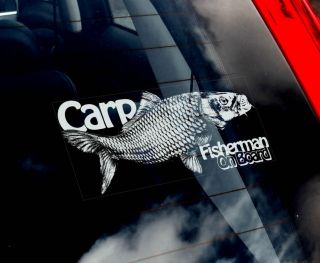Carp Fishing Car Window Sticker Koi Fisherman not Salmon Pike Bass Fly