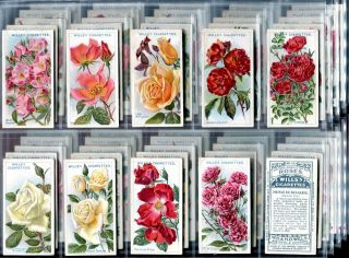 Tobacco Card Set, WD & HO Wills, ROSES, Garden Rose Types, 2nd Series