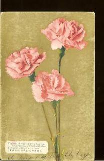 Long Stem Pink Carnations Flowers Poem Vintage Postcard