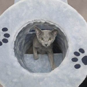 Savvy Tabby Tunnel Tower Perch Cat Play Furniture