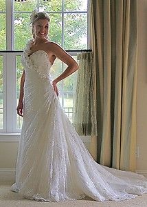 Maggie Sottero Catarina Wedding Gown Stunning Lace Covered size 10 12