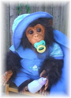 Custom OOAK Reborn Baby Chimp Chimpanzee Monkey Doll You Choose Boy or