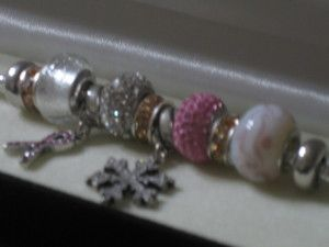 Charmed Memories Bracelet and Charms by Kays Jewelers