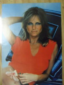 Vintage Sexy Girl Dorm Poster 1977 Cheryl Tiegs in Red