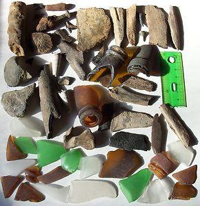 Maryland Chesapeake Bay Beach Glass Stone Bone Ray Shark Teeth Shell