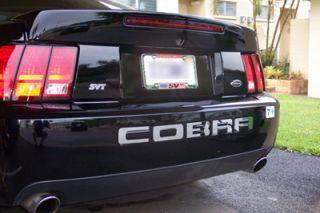 03 04 Mustang Cobra Stainless Steel Bumper Letters SVT