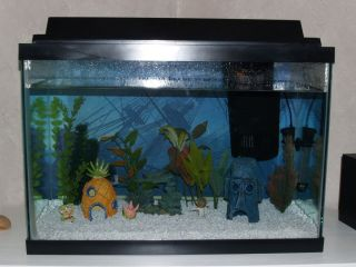 Complete 20 Gallon Fish Aquarium Tank with all Components