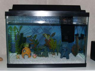 Complete 20 Gallon Fish Aquarium Tank with all Components