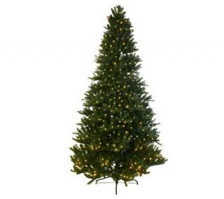 Mr. Christmas Wisconsin Fir 9 Pre Lit LED Tree with 5 Year LMW