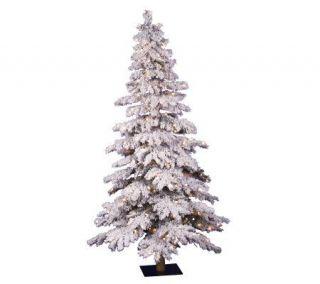 Flocked Spruce Prelit Tree by Vickerman   Clear —
