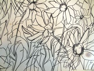 Line Drawing Botanical Study Original Art Ray L Crenna Raylc
