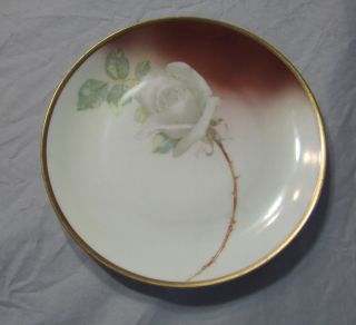 FAVORITE BAVARIA HAND PAINTED NORMA BEAUTY ROSE PLATE SIGNED DARCY