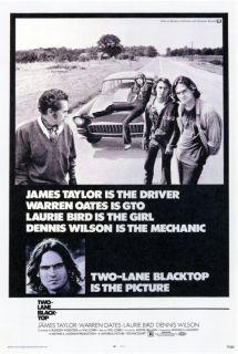 Movie Poster 27x40 B James Taylor Dennis Wilson Warren Oates
