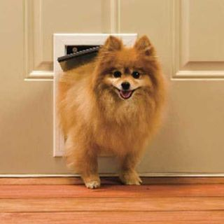 PetSafe Freedom Premium Aluminum Dog Cat Door Small