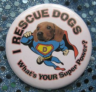 Rescue Dogs Superhero Dachshund Pin Badge Button