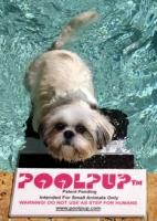 Small Pool Pup Pet Dog Stair Swimming Pool Ramp Step