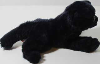 Douglas Cuddle Toy BLACK KITTY CAT Stuffed Plush Animal SOFT TOY
