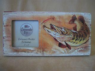 Chesapeake Bay Ltd Self Standing Fish Hook Photo Frame For 3 X 3 Photo