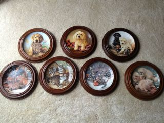 Edwin M Knowles Fine China Company Collectors Plates Amy Brackenbury