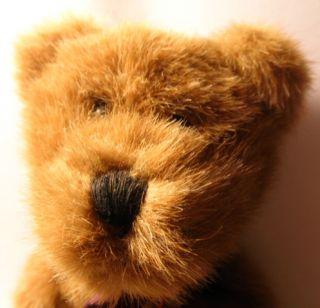 Bean and Associates 14 Jointed Plush Teddy Bear So Soft