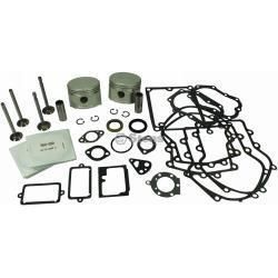 Overhaul Kit Briggs Stratton Engine 16 18 HP 010