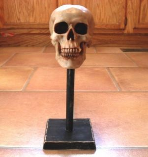 Skull Mask Stand for Freddy Myers Don Post Zombie All Latex Masks