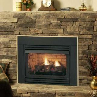 Ventless Propane Fireplace On Popscreen