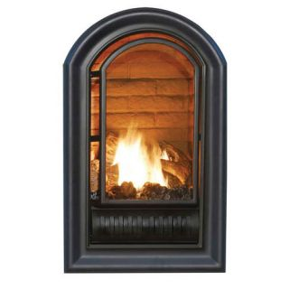 Fireplace Procom Vent Free Propane Natural Gas Log Fireplace Insert