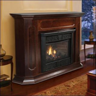 Vent Free Gas Fireplaces Ventless Propane Natural Gas w Fireplace