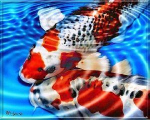 Japanese Art Koi Fish Pond Romantic Feng Shui Painting