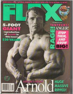 Schwarzenegger Bodybuilding Muscle Fitness Magazine 10 91