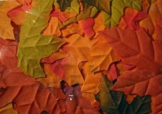 200 Fall Wedding Maple Leaf Petals Favors Flowers