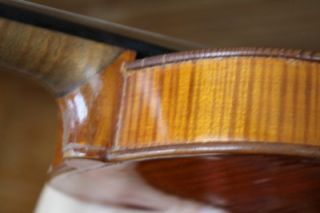 Vintage Violin Labeled: Gennaro De Luccia 1925