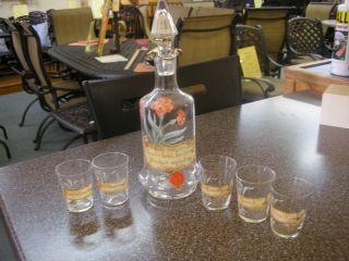 German Glass Liquor Decanter Bottle 6 Shot Glasses Free SHIP