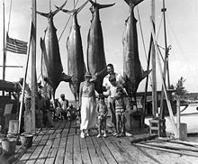 man, a woman, and three boys standing on a pier with four large fish
