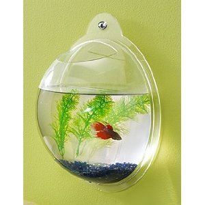 Fish Bowl Aquarium Wall Mount Tank Beta Goldfish Acrylic High Quality